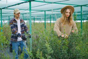 Tuinman is bereid om tuintechnieken te gebruiken om prachtige tuinen te creëren